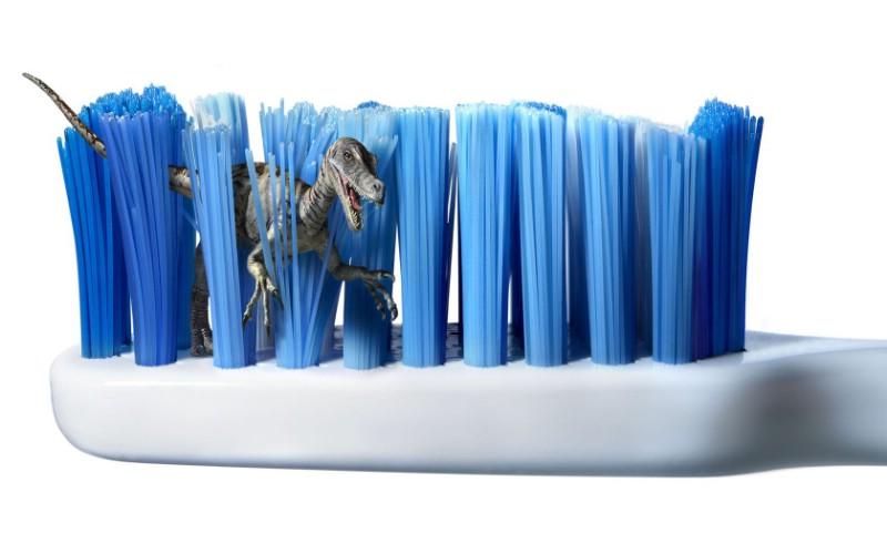 幼儿园生活区投放材料牙刷